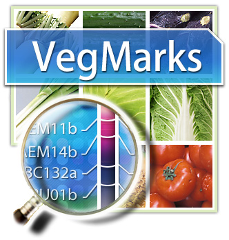 VegMarks : a DNA marker database for vegetables